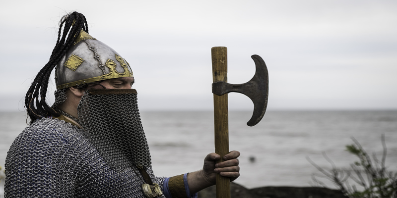 Image for Viking Walk of Annagassan